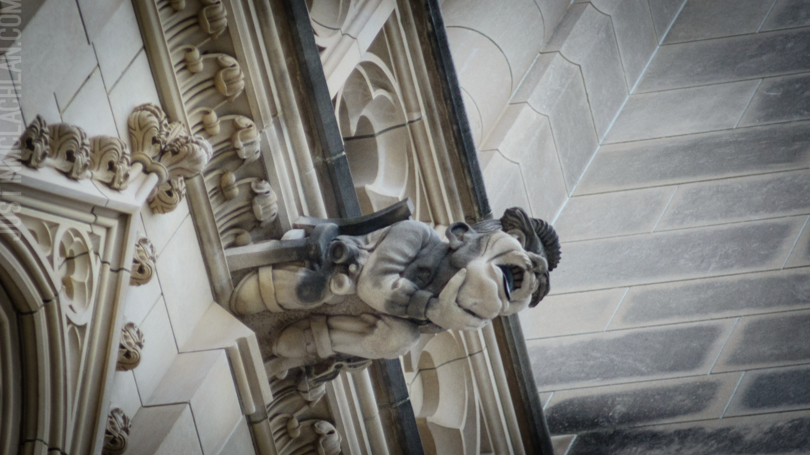 National Cathedral Gargoyles Grotesques